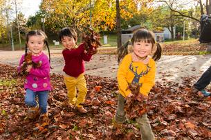 落ち葉を集めて遊ぶ女の子男の子の写真素材 [FYI01569488]