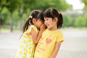 新緑の公園でないしょ話する女の子の写真素材 [FYI01569524]