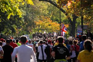 紅葉とニューヨークシティーマラソンの写真素材 [FYI01569820]