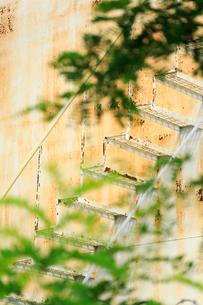 ブルックリンの石油タンク階段と新緑の写真素材 [FYI01569932]