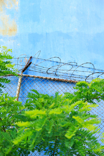 ブルックリンの石油タンクと新緑とフェンスの写真素材 [FYI01569952]