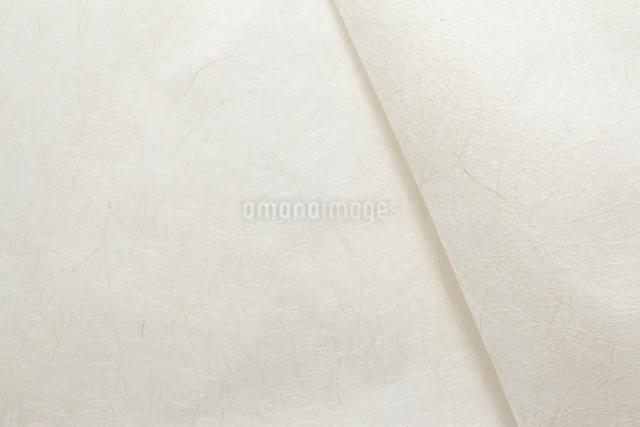 和紙の写真素材 [FYI01569988]