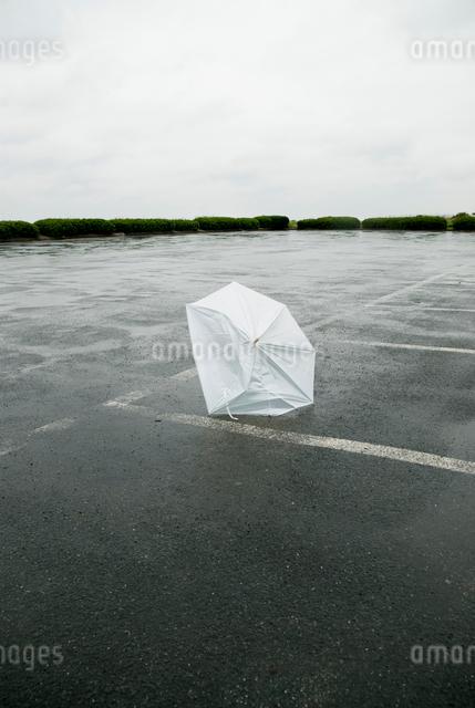 表浜駐車場の壊れた傘の写真素材 [FYI01570014]