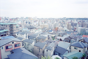 野毛山公園から眺めた横浜市外地の写真素材 [FYI01570318]