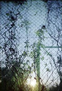 テニス練習場のフェンスの写真素材 [FYI01570347]