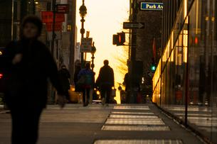夕暮れミッドタウン通勤風景の写真素材 [FYI01570416]