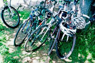 木陰に駐輪する複数のスポーツサイクル自転車の写真素材 [FYI01570638]