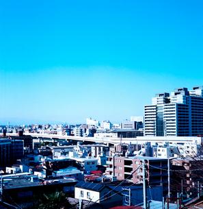 野毛山公園から眺める横浜市街の写真素材 [FYI01570751]