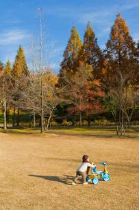 公園で三輪車を押す日本人の男の子の写真素材 [FYI01570981]