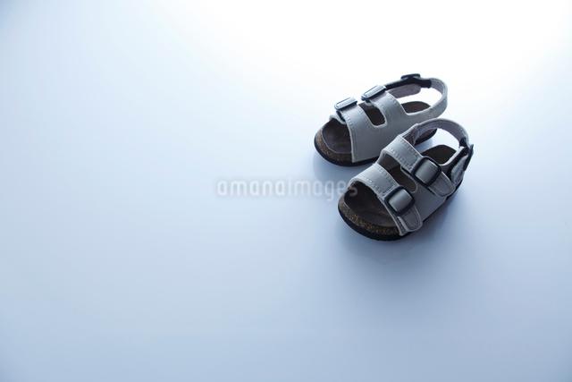 1足のサンダルの写真素材 [FYI01570996]