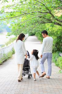 べビーカーを押しながら並木道を歩く日本人家族の写真素材 [FYI01571304]