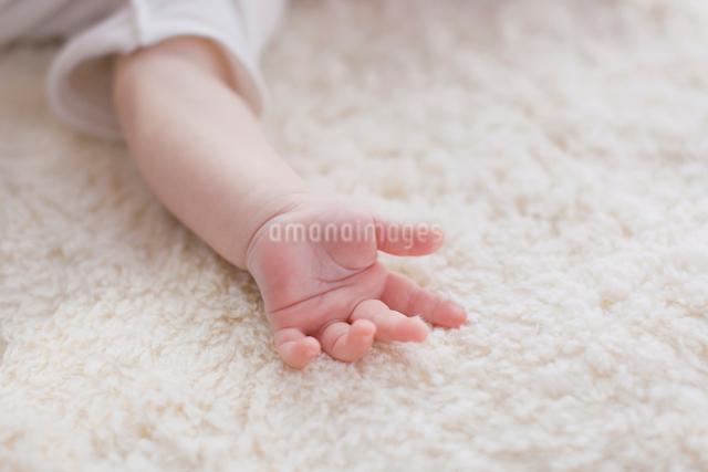 赤ちゃんの手のアップの写真素材 [FYI01571580]