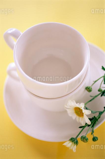 花とコーヒーカップの写真素材 [FYI01571716]