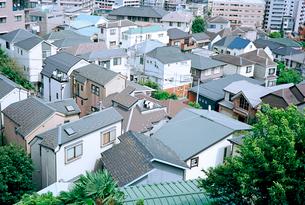 野毛山公園から眺める横浜市外地の写真素材 [FYI01571998]