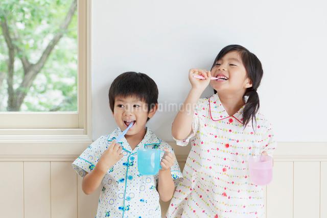 歯磨きをする日本人の男の子と女の子の写真素材 [FYI01572433]