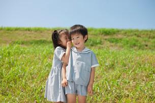 草原で耳打ちをする2人の幼稚園児の写真素材 [FYI01572804]