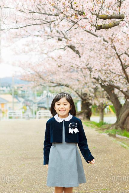 桜の木の下に立つ新入学の女の子の写真素材 [FYI01573008]