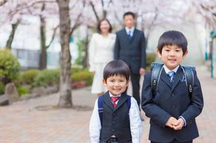桜並木に立つ兄弟の写真素材 [FYI01573235]