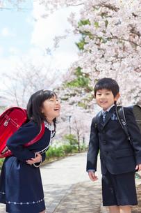 桜並木で笑う小学1年生の男女の写真素材 [FYI01573259]