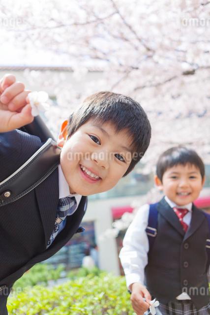 桜の木の前で笑う兄弟の写真素材 [FYI01573293]