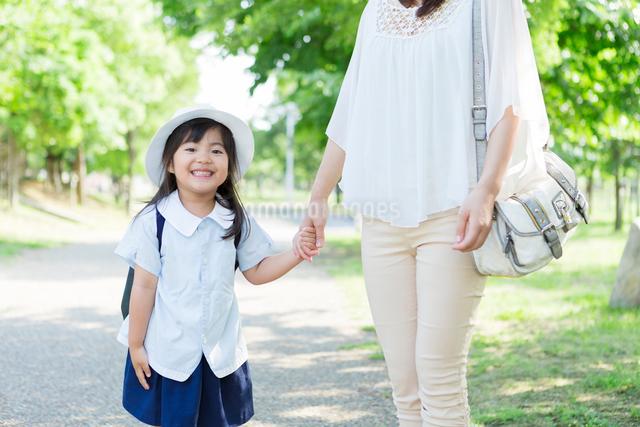 母親と手を繋ぐ幼稚園児の写真素材 [FYI01573350]