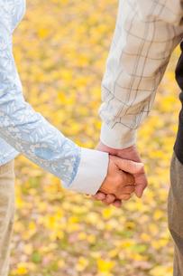 手を繋ぐシニア夫妻の手元の写真素材 [FYI01573431]