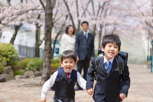 桜並木を走る兄弟と両親の写真素材 [FYI01573468]
