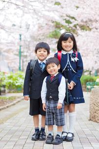 桜並木に立つ小学生の男女と幼稚園児の写真素材 [FYI01573479]