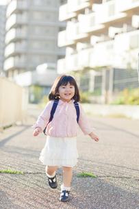 幼稚園児の女の子の写真素材 [FYI01573503]