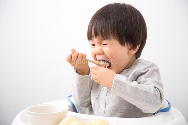 食事をする男の子の写真素材 [FYI01573662]