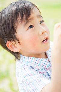 日本人の男の子の写真素材 [FYI01574287]