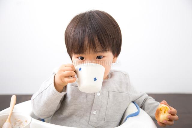 コップを持つ男の子の写真素材 [FYI01574863]
