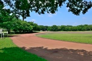 都立大泉中央公園陸上競技場の写真素材 [FYI01580482]