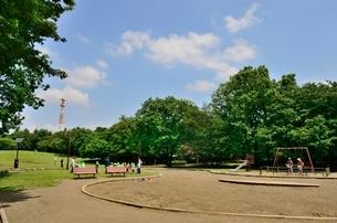 都立大泉中央公園の写真素材 [FYI01580719]