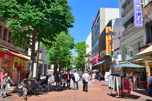 横浜伊勢佐木町商店街イセザキモールの写真素材 [FYI01581787]