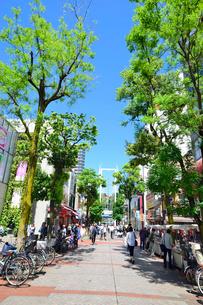 横浜伊勢佐木町商店街イセザキモールの写真素材 [FYI01581962]