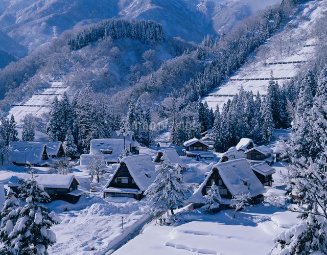 冬の五箇山の写真素材 [FYI01582149]