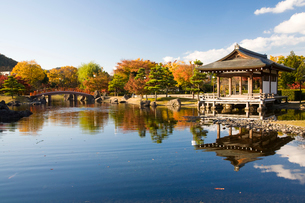 紫式部公園の写真素材 [FYI01582187]