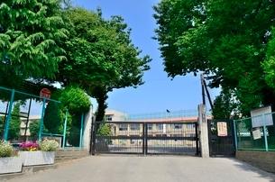 練馬区立大泉第一小学校の写真素材 [FYI01582255]