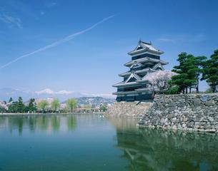松本城の堀との桜の写真素材 [FYI01582260]