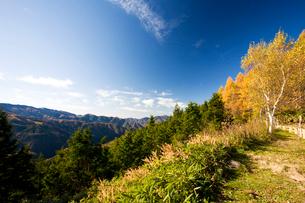紅葉の山並とカラマツの紅葉の写真素材 [FYI01582265]