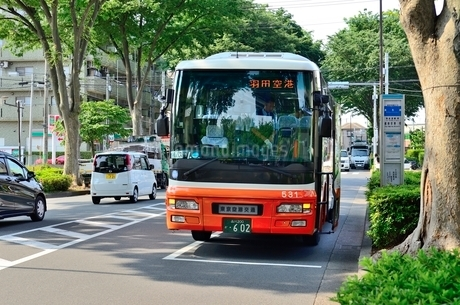 成田空港羽田空港行き高速バス長久保停留所の写真素材 [FYI01582294]