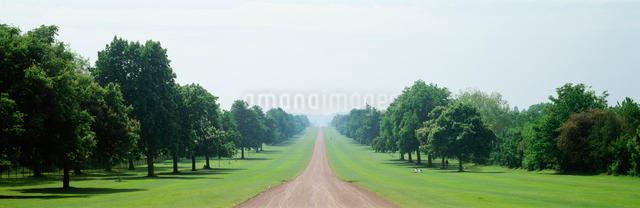 並木道 ウィンザー城前の写真素材 [FYI01582339]