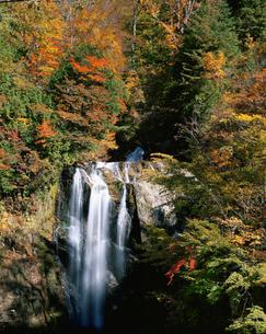 天生中滝と紅葉の写真素材 [FYI01582372]
