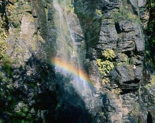 虹が架かる滝の写真素材 [FYI01582434]