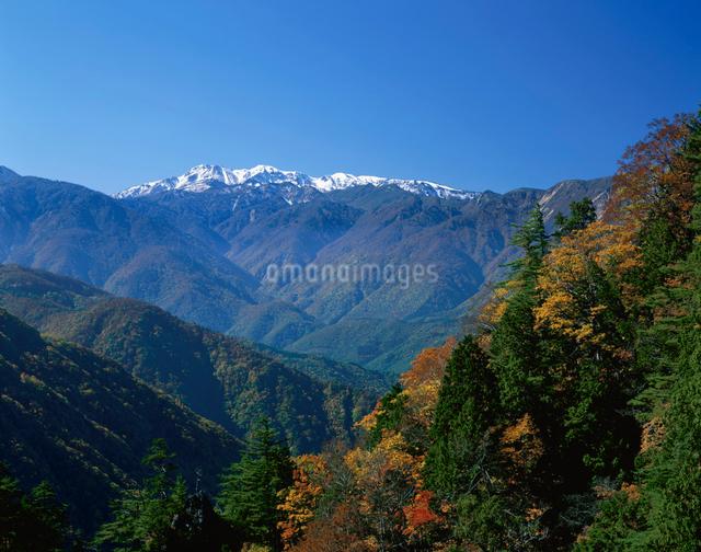穂高連峰と紅葉の写真素材 [FYI01582536]