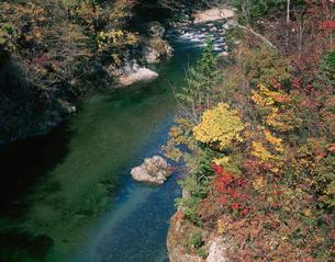 紅葉と川の流れの写真素材 [FYI01583136]