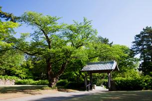 金沢城 切手門の写真素材 [FYI01583448]