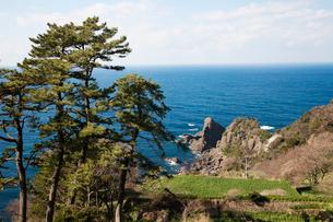 越前海岸の風景の写真素材 [FYI01583751]