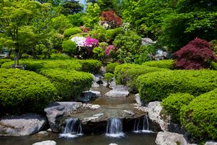 西山公園 嚮陽庭園の写真素材 [FYI01583823]